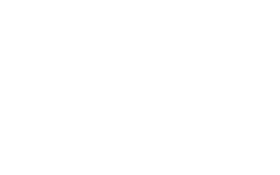 Paul Nehlen for Congress Retina Logo